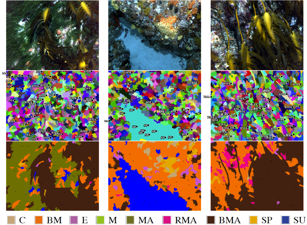 Superpixel classification example images. The first row shows the original image examples; the second row shows labels overlaid onto segmented images (with the unlabeled superpixels coloured randomly); and the third row shows the output from the automated classifier.